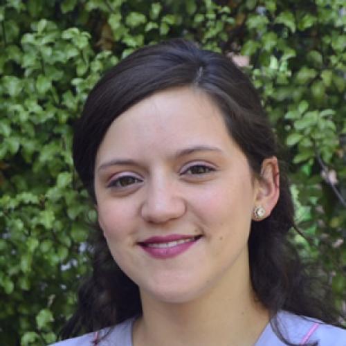 CARLA ANDREA MENDIETA MONTECINOS