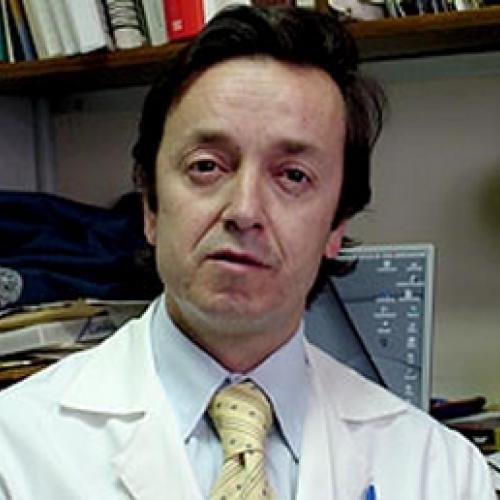JOSE ALEJANDRO MARTINEZ SEPULVEDA