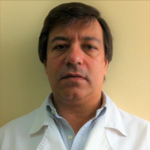 ANDRES HUGO GAÑI ARECO